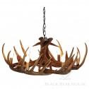 żyrandol z poroża jelenia black bear house