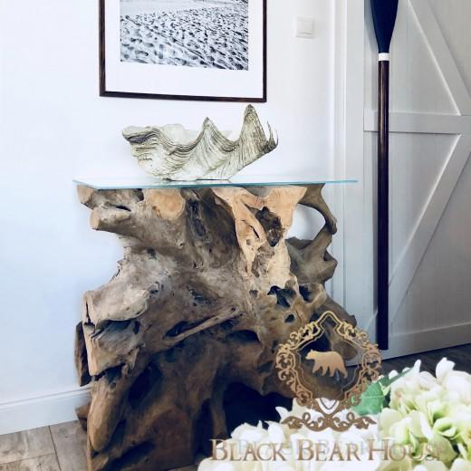 muszla dekoracyjna black bear house
