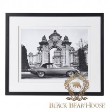 obraz jaguar black bear house