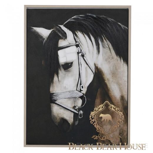 obraz koń black bear house.001